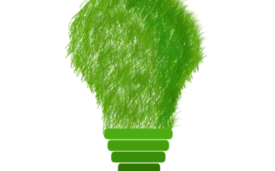 Behavioral Economics: Environmental Edition